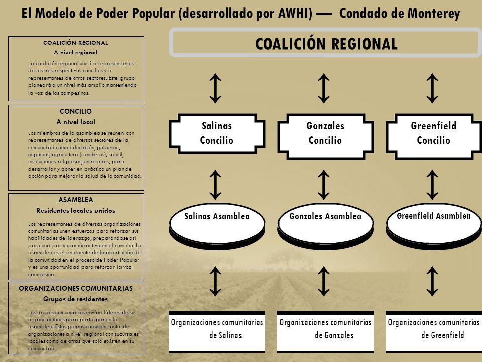 Participación directa de la comunidad Planeación y acción basada en los recursos de salud en la comunidad Estimulación de nuevo liderazgo Desarrollo de una coalición multi-sectoral Inclusión de los rancheros y campesinos Desarrollo comunitario con un enfoque en todos los recursos locales de salud Poder Popular: Componentes Claves