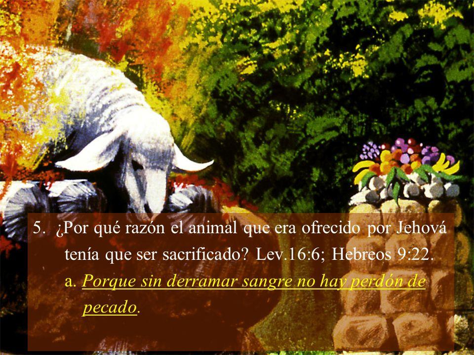6.¿Por quién se ofrecía el otro animal y en qué condición quedaba.