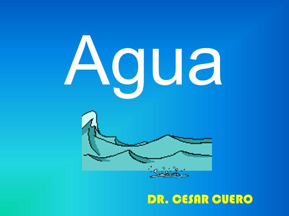 EL AGUA - Bajo peso molecular -Forma estereoscópica -Neutralidad de carga