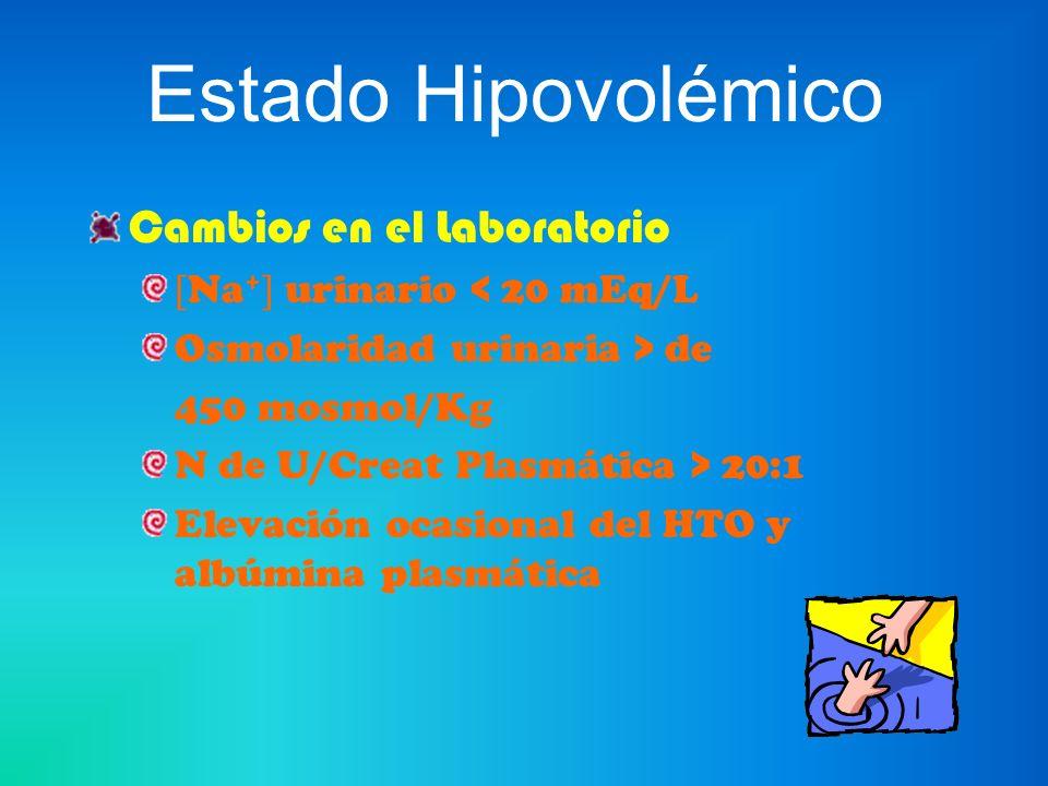 Estado Hipovolémico Tratamiento Reemplazo de Fluidos perdidos y basales Vía Oral –Pérdidas leves o moderadas - Dieta con 10 g de sal y 2-3 l de líquido.