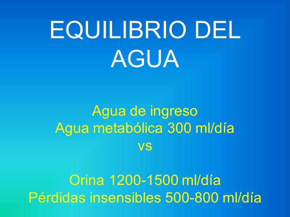 IE Ingerida1000Orina1000 De Alimentos200Sudor100 Metabolismo300Ventilación300 ----------------------Excremento100 1500