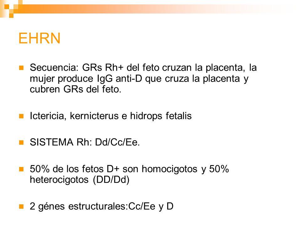 EHRN: PATOGÉNESIS Mujer D- con embarazo previo, HTP, anti-Rh; Prueba de elución ácida: 1/200,000 RBCs.