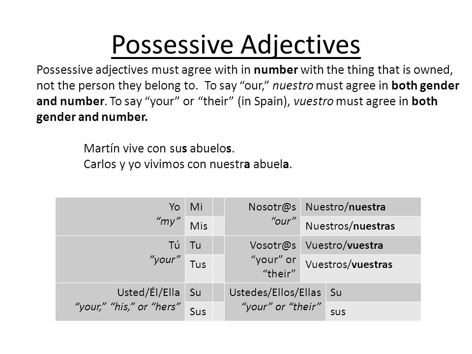 Possessive adjectives must agree with in number with the thing that is owned, not the person they belong to.