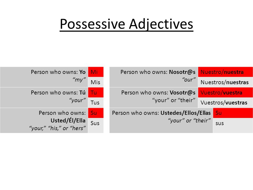 Possessive Adjectives Person who owns: Yo my MiPerson who owns: Nosotr@s our Nuestro/nuestra MisNuestros/nuestras Person who owns: Tú your TuPerson who owns: Vosotr@s your or their Vuestro/vuestra TusVuestros/vuestras Person who owns: Usted/Él/Ella your, his, or hers SuPerson who owns: Ustedes/Ellos/Ellas your or their Su Sussus