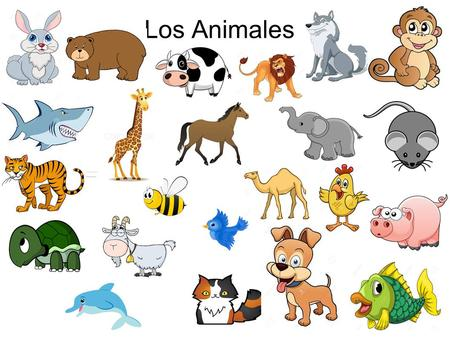 Los Animales. Adjectivos Mediano – medium Peludo – furry (can also be shaggy) Hembra – female Macho – male Amable – friendly Juguetón – playful Tímido.