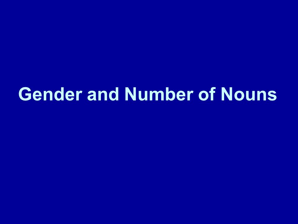 Gender of nouns Masculine nouns use the articles el and un.