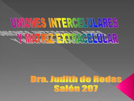 UNIONES INTERCELULARES