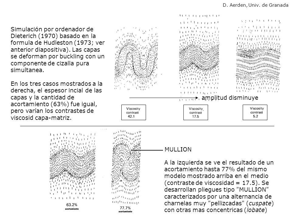Flexural Flow DISTRUBUCION DE LA DEFORMACIÓN INTERNA EN PLIEGUES FORMADOS POR BUCKLING: 2 modelos extremos plegamiento de una banda elastica Deformación Tangencial Longitudinal (DTL) deformación en la charnela, no en los flancos deformación en los flancos, no en la charnela s.n.