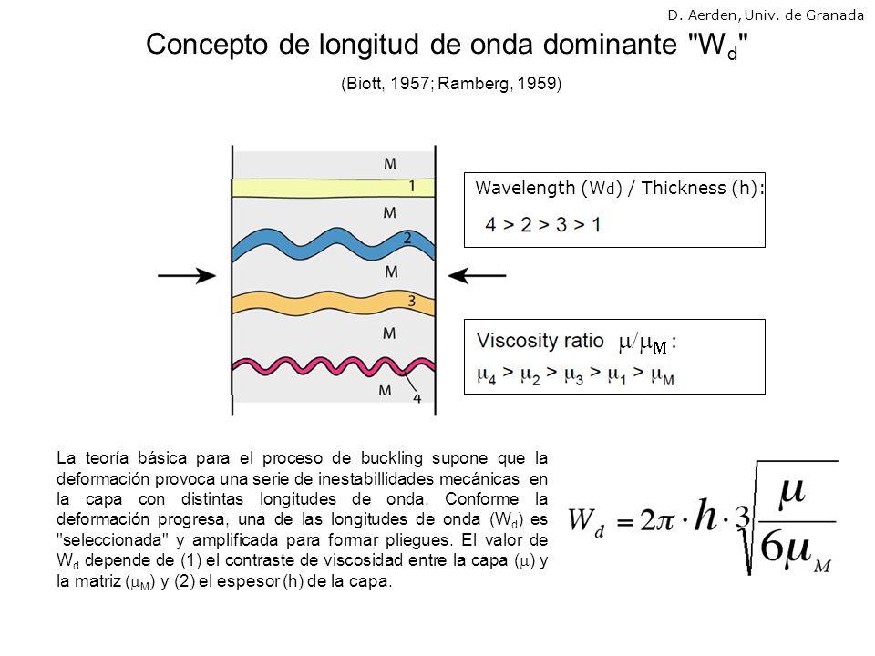 La teoría de buckling predice la formación de pliegues parasiticos donde capas delgadas (con W d menor) son forzadas a seguir la forma de las capas mas gruesas (W d mayor).
