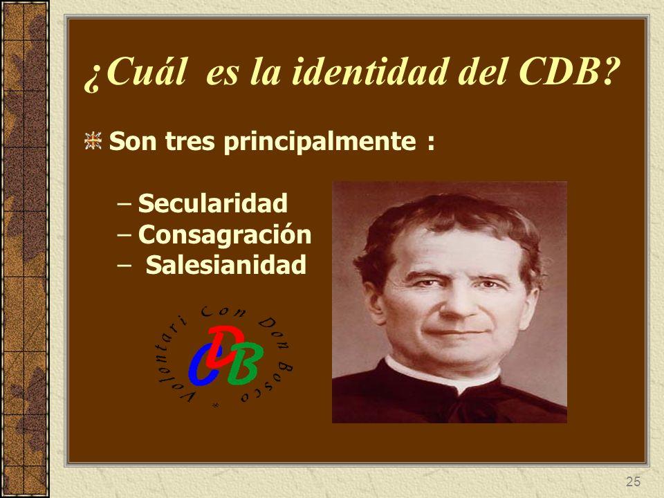 26 A qué se comprometen Reflejar el Rostro Alegre de Dios al estilo de Don Bosco.