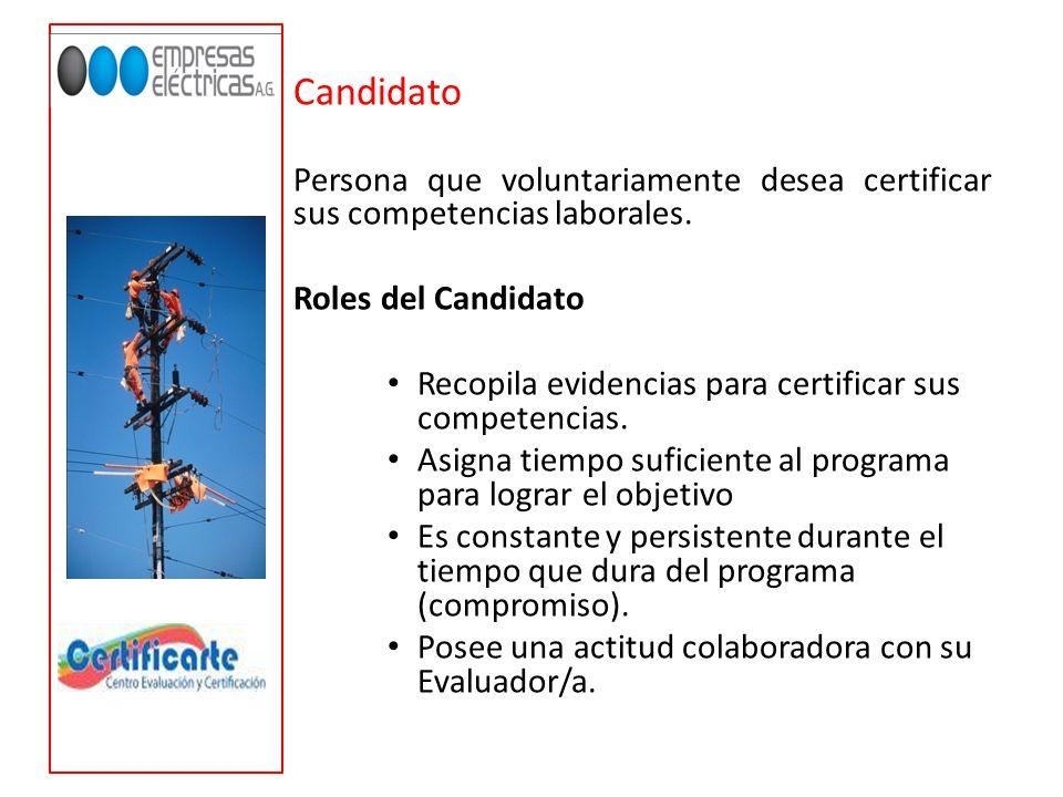 Evaluador : Persona con experiencia en el sector eléctrico.