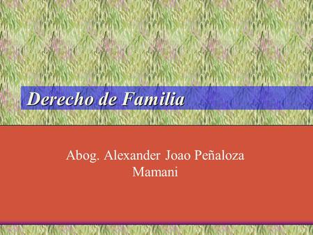 Concepto de derecho de familia en chile
