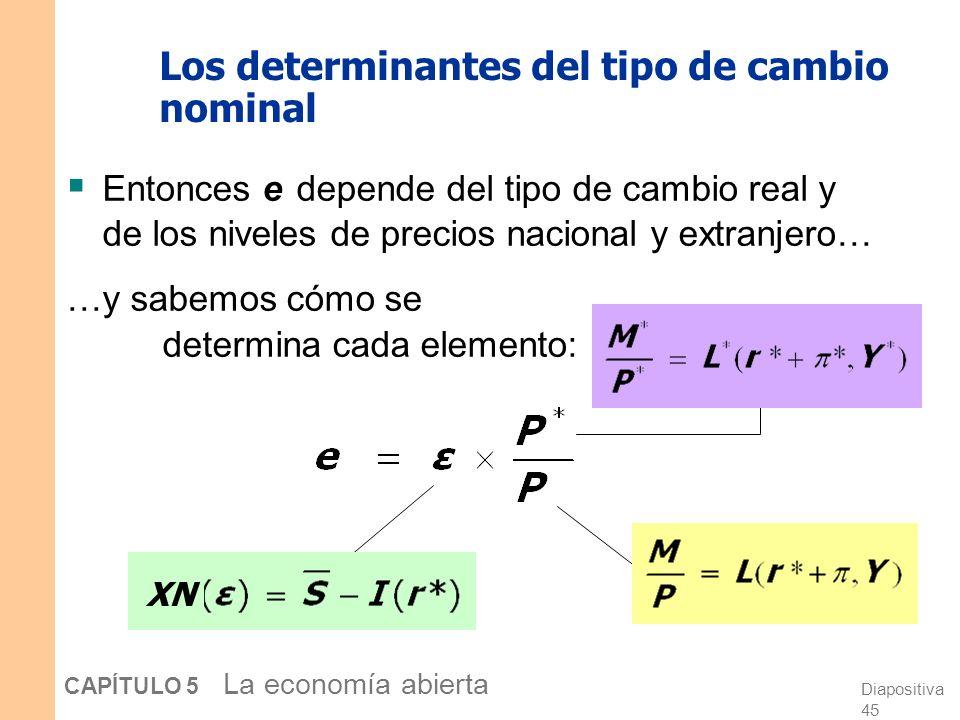 Diapositiva 45 CAPÍTULO 5 La economía abierta Los determinantes del tipo de cambio nominal Entonces e depende del tipo de cambio real y de los niveles de precios nacional y extranjero… …y sabemos cómo se determina cada elemento: XN