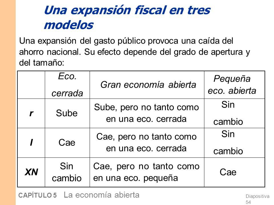 Diapositiva 54 CAPÍTULO 5 La economía abierta XN I r Gran economía abierta Pequeña eco.