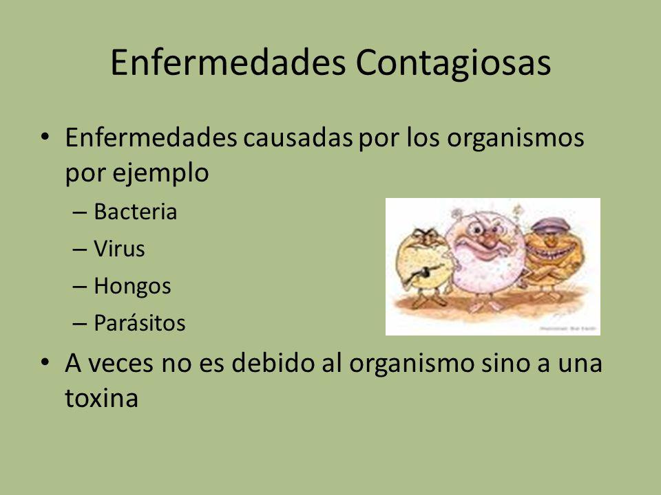 Enfermedades causadas por los organismos por ejemplo : – B_ _ _ _ _ _ _ – V_ _ _ _ _ _ – H_ _ _ _ – P_ _ _ _ _ _ _ _