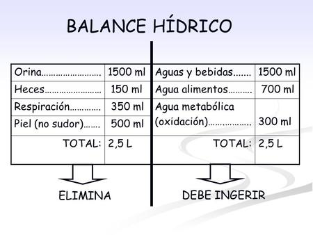 BALANCE HÍDRICO Orina…………………….1500 ml Heces…………………… 150 ml Respiración…………. 350 ml Piel (no sudor)……. 500 ml TOTAL:2,5 L Aguas y bebidas.......1500 ml.