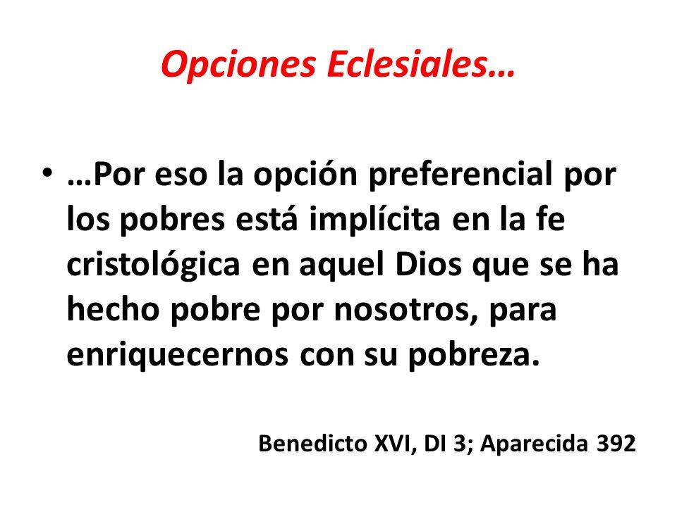 Opciones Eclesiales… Todo proceso evangelizador implica la promoción humana y la auténtica liberación ¨sin la cual no es posible un orden justo en la sociedad.
