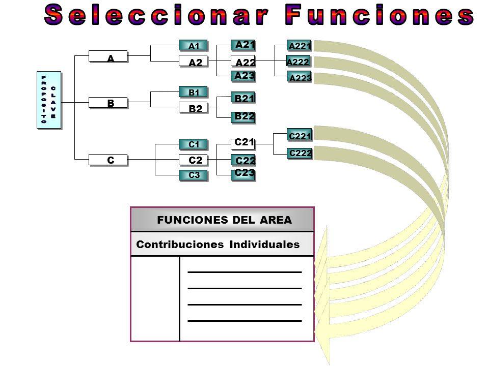 A B C B2 B1 A1 A2 C2 C3 C1 A23 A22 A21 B21 B22 C22 C21 C23 A222 A223 A221 C222 C221 FUNCIONES DEL AREA Contribuciones Individuales