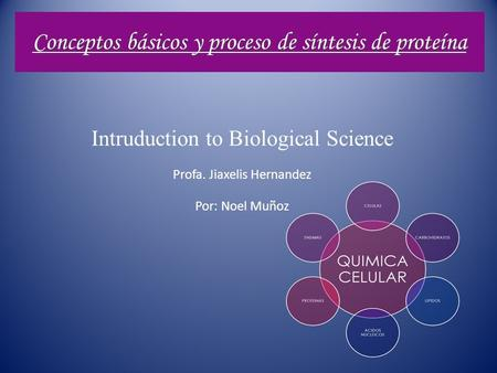 Conceptos básicos y proceso de síntesis de proteína Intruduction to Biological Science Profa. Jiaxelis Hernandez Por: Noel Muñoz.