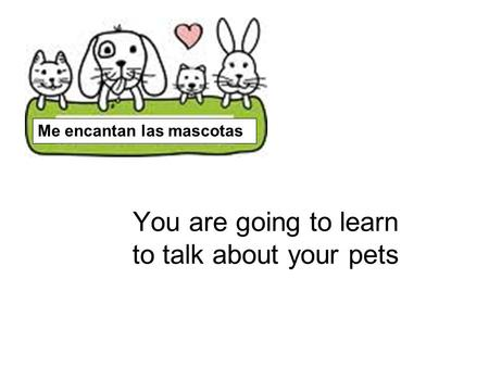 You are going to learn to talk about your pets Me encantan las mascotas.