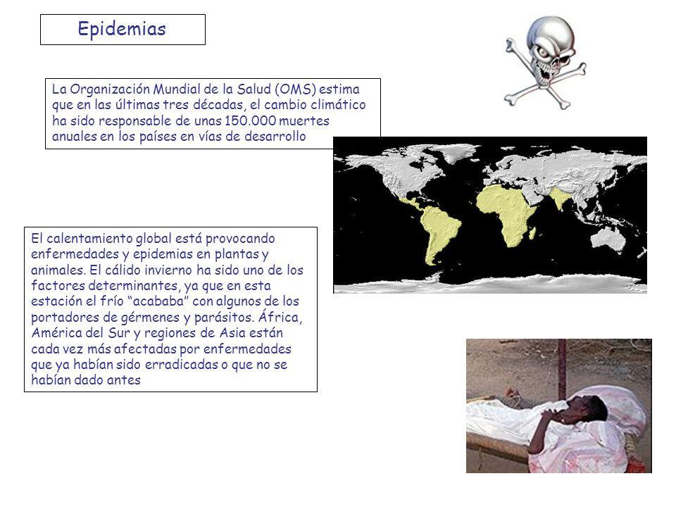 1- ¿Qué enfermedades están aumentando su incidencia por el cambio climático.