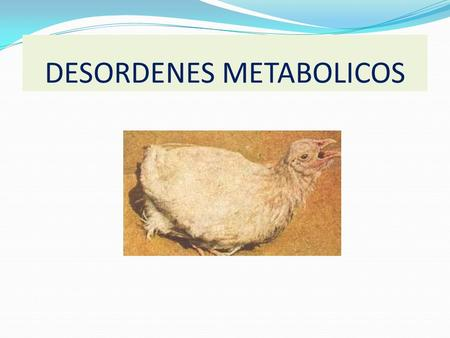 DESORDENES METABOLICOS Breed utilization, genetic improvement, and industry consolidation are predicted to have major impacts on the genetic composition.