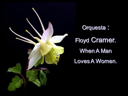 Orquesta Orquesta : Floyd Floyd Cramer. When A Man Loves A Women.