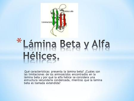 Lámina Beta y Alfa Hélices.