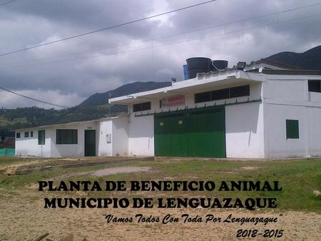 PLANTA DE BENEFICIO ANIMAL MUNICIPIO DE LENGUAZAQUE