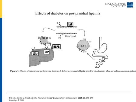 Figure 1. Effects of diabetes on postprandial lipemia. A defect in removal of lipids from the bloodstream after a meal is common in patients with diabetes.