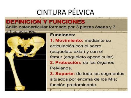 Los preparados para el tratamiento de las hernias de la columna vertebral