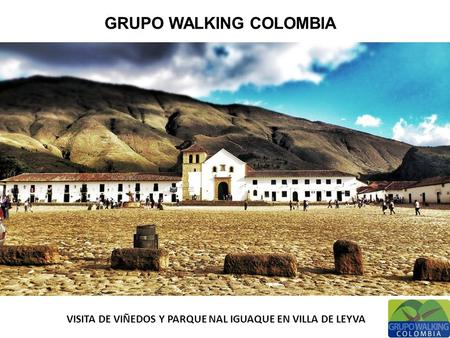 GRUPO WALKING COLOMBIA