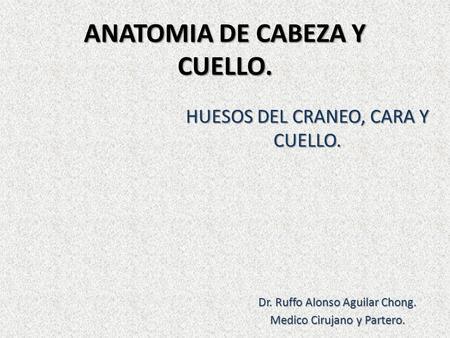 CABEZA ANATOMIA TOPOGRAFICA CUELLO Y DE PDF