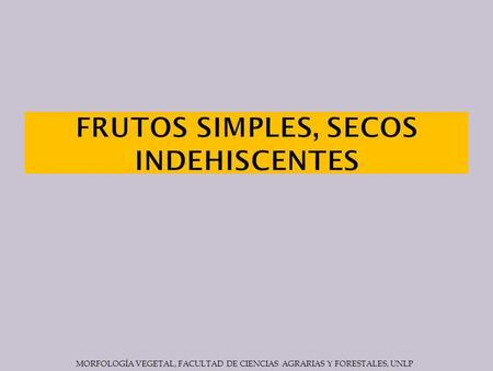 FRUTOS SIMPLES, SECOS INDEHISCENTES