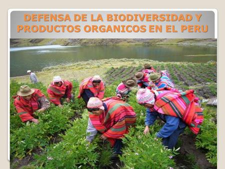 DEFENSA DE LA BIODIVERSIDAD Y PRODUCTOS ORGANICOS EN EL PERU NUTRY BODY SAC.