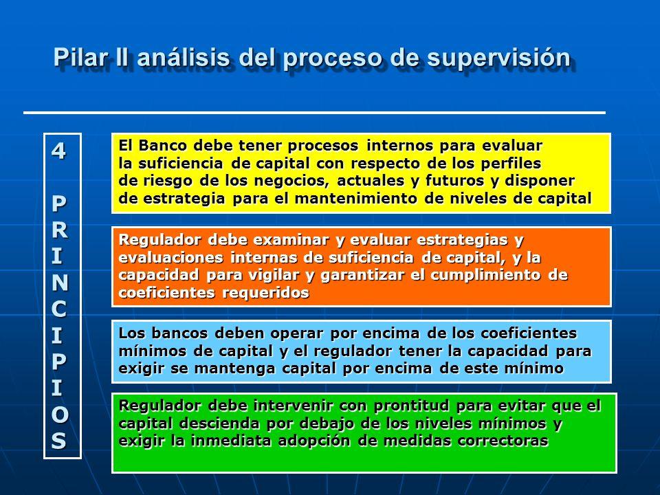 Pilar II análisis del proceso de supervisión Principio I.
