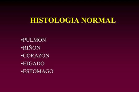 HISTOLOGIA NORMAL PULMON RIÑON CORAZON HIGADO ESTOMAGO.