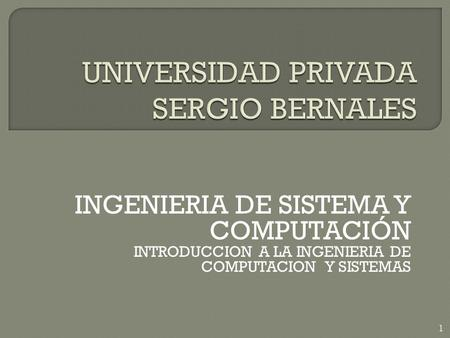 UNIVERSIDAD PRIVADA SERGIO BERNALES