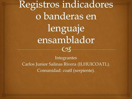 Integrantes Carlos Junior Salinas Rivera (ILHUICOATL). Comunidad: coatl (serpiente).