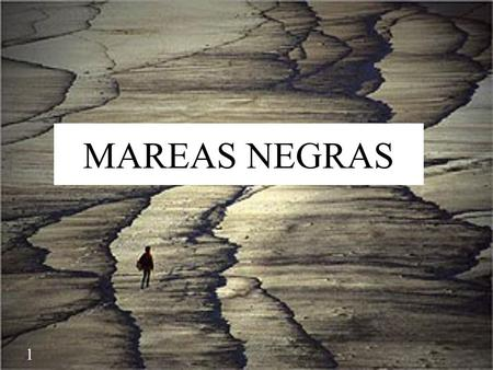 MAREAS NEGRAS The accidente of Prestige took place on the 13rd of November 2002 near Galicia. The oil tanker Prestige was 26 years old ship loaded with.