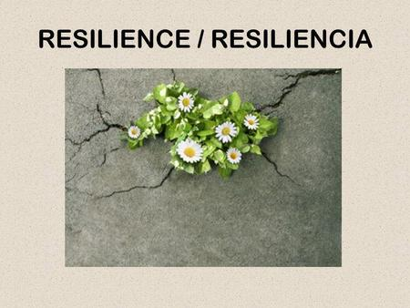 RESILIENCE / RESILIENCIA. BOUNCING BACK / REBOTAR.