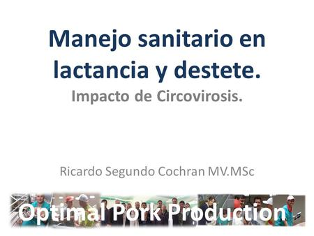 Manejo sanitario en lactancia y destete. Impacto de Circovirosis. Ricardo Segundo Cochran MV.MSc Optimal Pork Production.