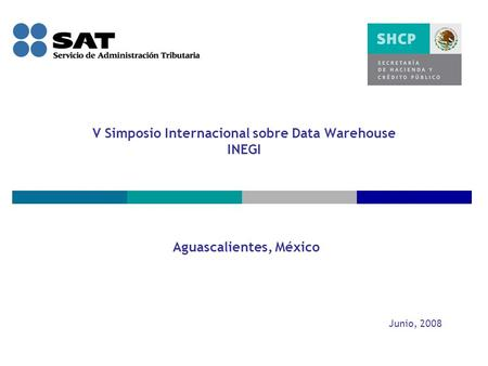V Simposio Internacional sobre Data Warehouse INEGI Aguascalientes, México Junio, 2008.
