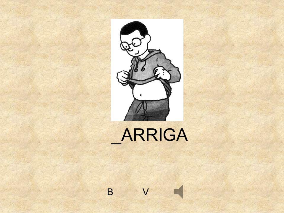 VB _ARRIGA