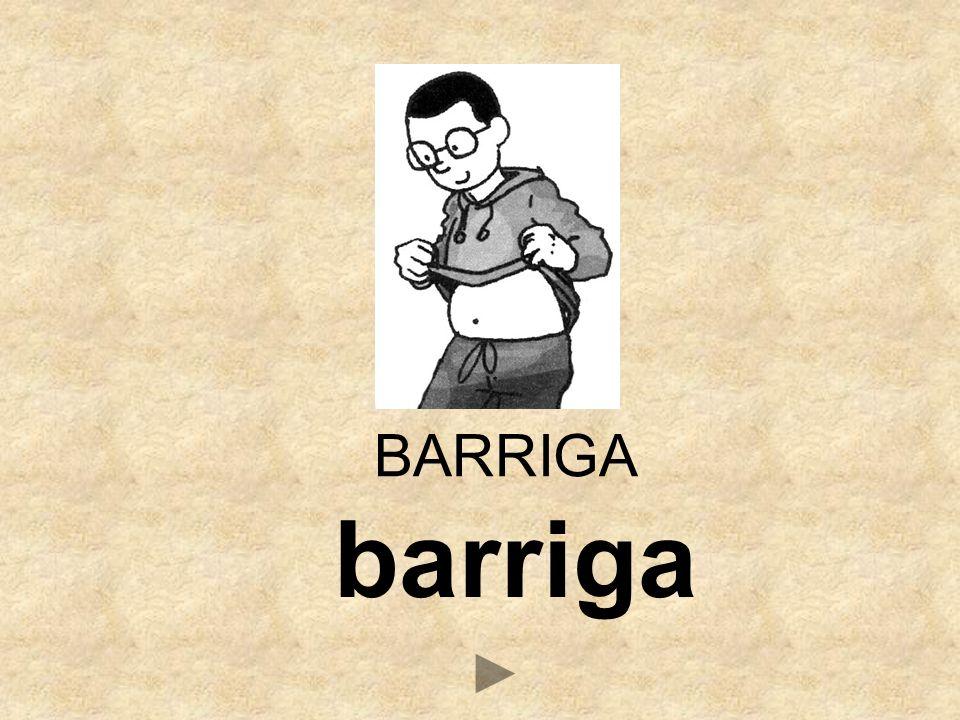 barriga BARRIGA