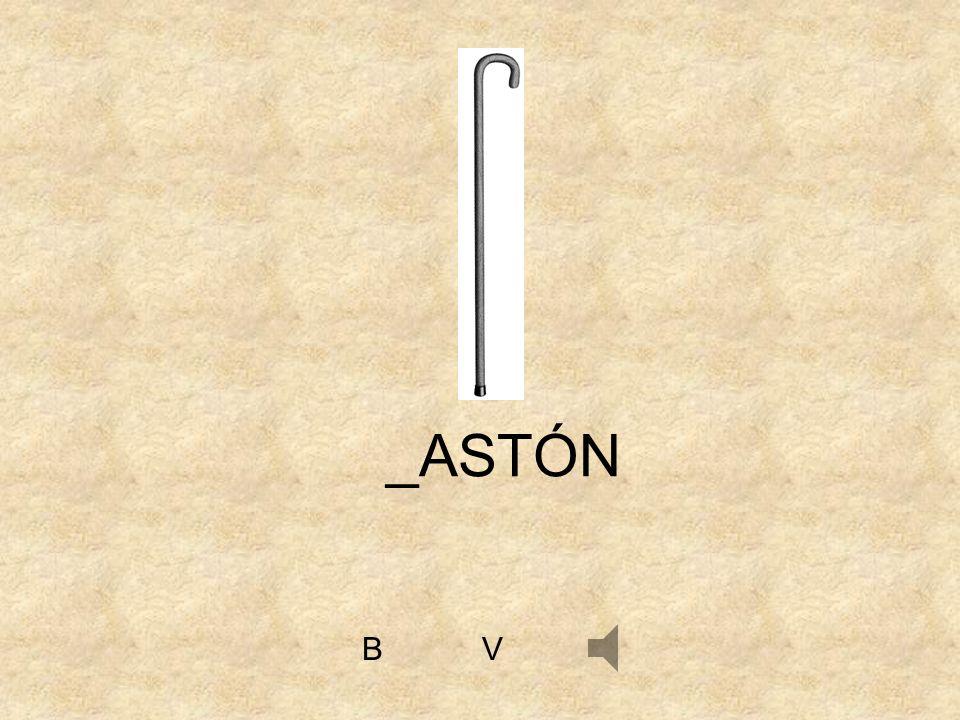 VB _ASTÓN