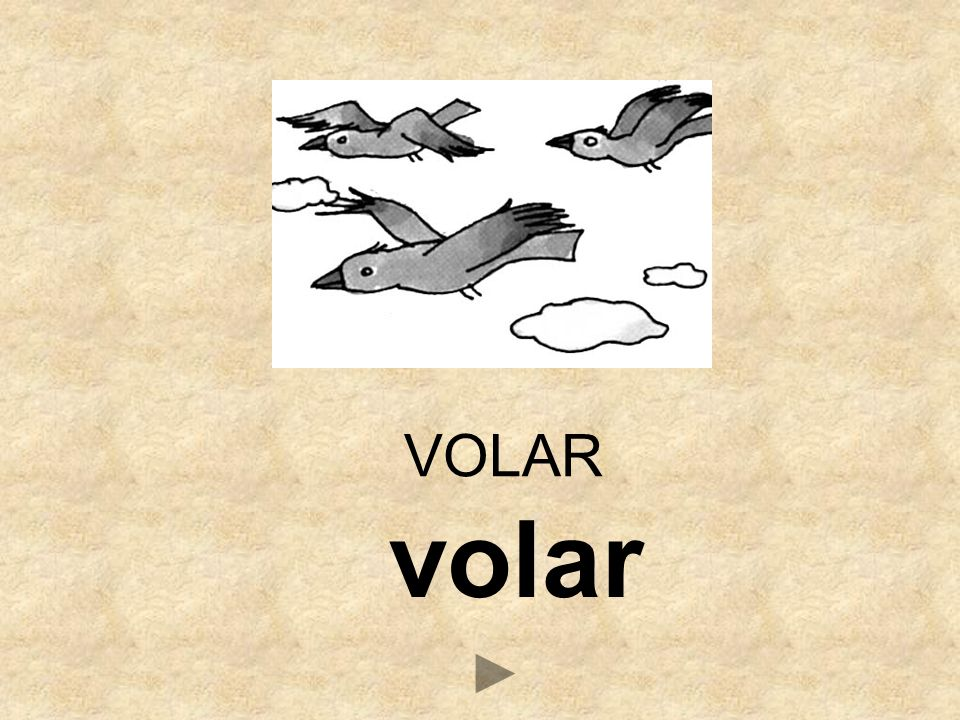 volar VOLAR