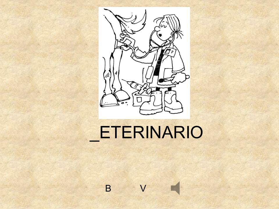 VB _ETERINARIO