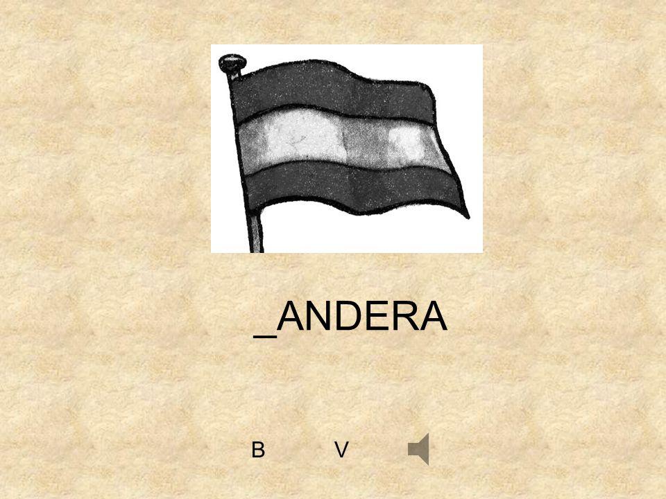 VB _ANDERA