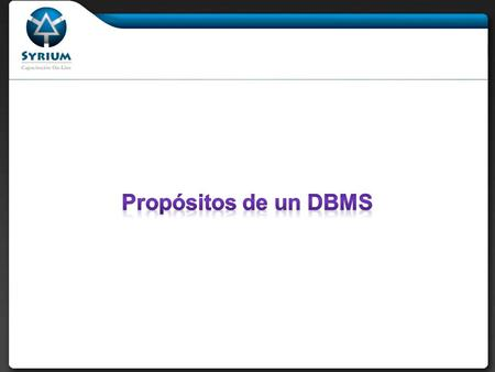 Propósitos de un DBMS.